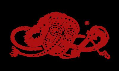 NZÜ Logo